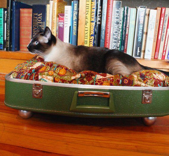 Recycled vintage suitcase pet bedBeds Vintage, Dogs Beds, Cat Beds, Suitcases Pets, Vintage Suitcases, Pets Beds, Repurposing Suitcases, Pet Beds, Old Suitcas