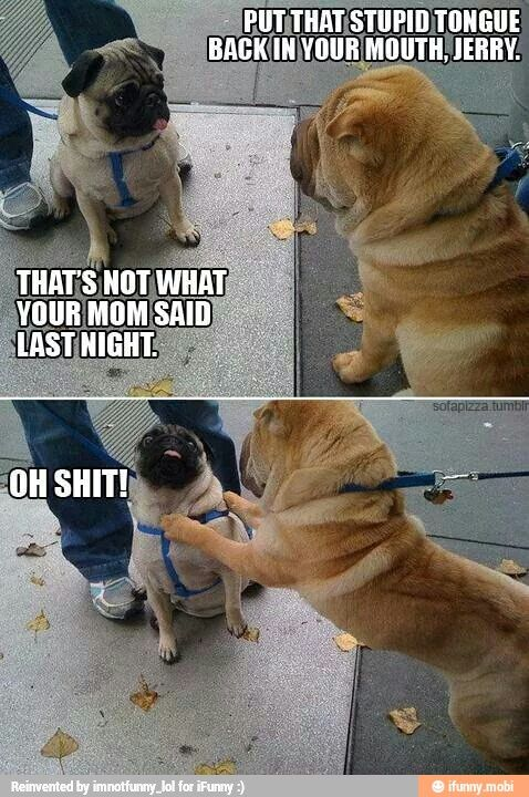 Not what your mom said... / iFunny :)