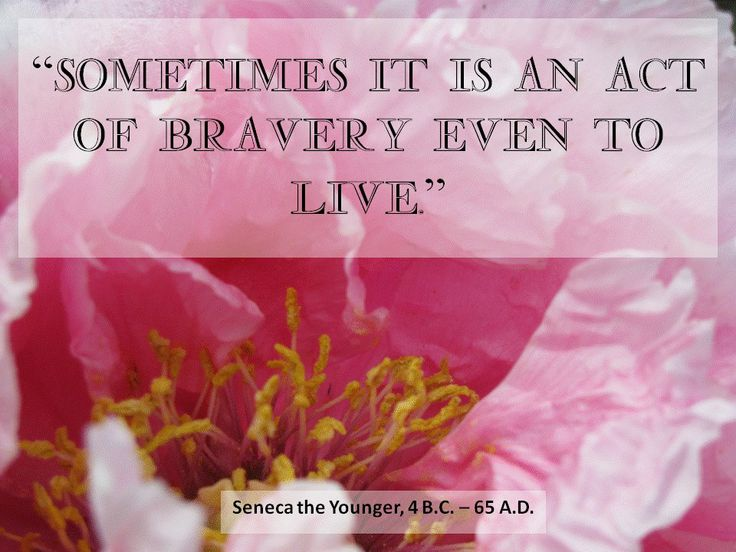 """Sometimes it is an act of bravery even to live. "" - Seneca the Younger #brave #survive #survival #roman #flower #pink #quotes"