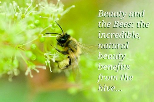 Beauty that comes from bees: who would have thought there could be so many benefits!