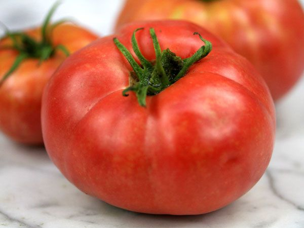 129 best heirloom and open polinated tomato varieties - Best romanian pepper cultivars ...