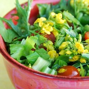 Actually Broccoli Heads Are The Flower Part Of Plant And If Left To Bloom Make White Or Yellow Flowers In This Salad D