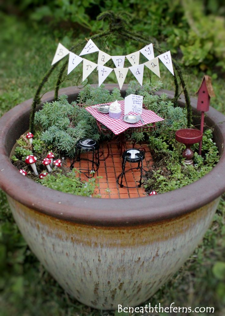 Miniature Fairy Birthday Garden