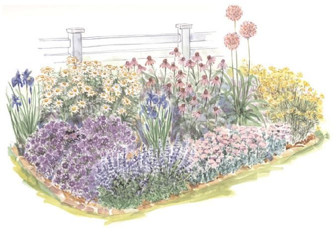 garden plan - A full sun corner in the garden