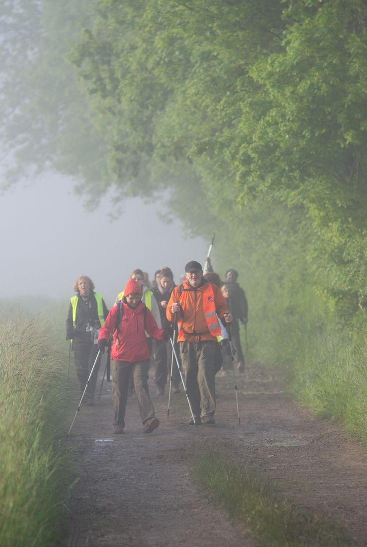 Les 25 et 26 mai 2013, les marcheurs et marcheuses du Trailwalker ont parcouru 100 km en moins de 30h dans le Parc du Morvan, en Bourgogne.