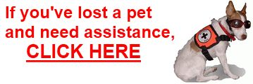 Lost Pet Recovery Tips including their behavior type, circumstances surrounding their disappearance, etc.