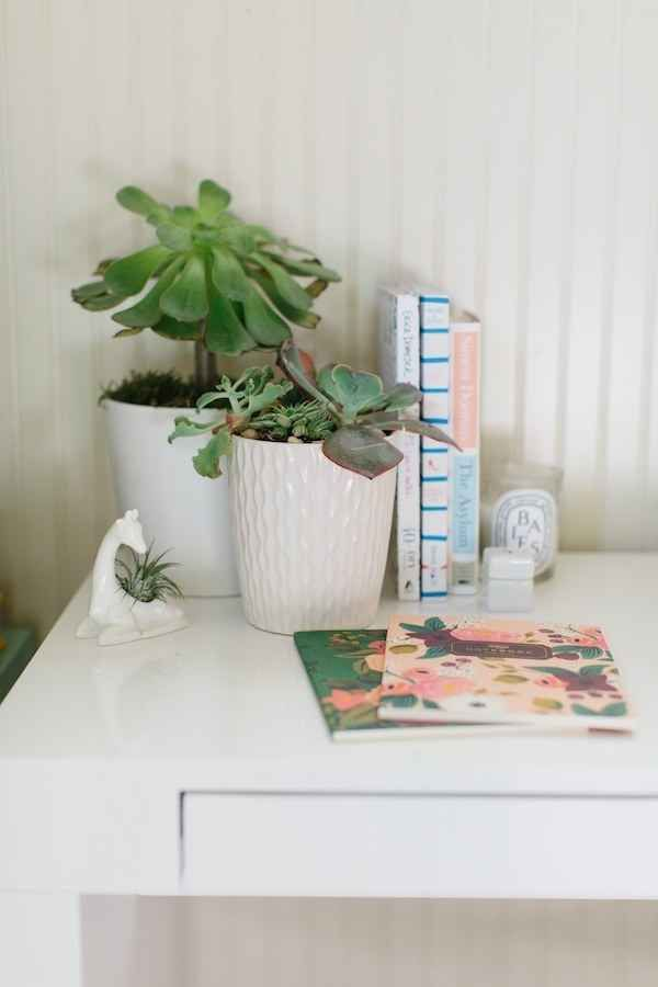 1000 ideas about desk plant on pinterest office plants work desk and pencil holders - Cubicle planters ...
