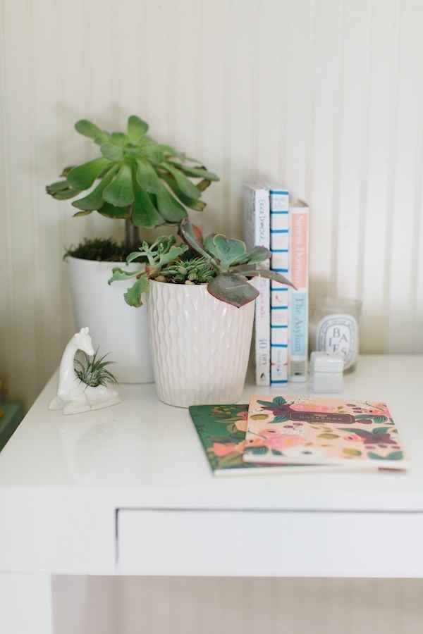 1000 ideas about desk plant on pinterest office plants work desk and pencil holders - Cubicle planters ...