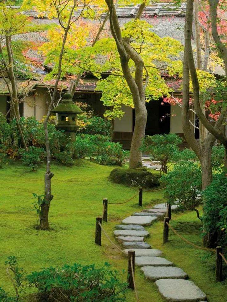 jardin japonais, mousse, allée en dalles de pierre et arbres exotiques