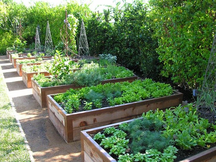 These raised vegetable and fruit gardens are perfect for any time of the year. I really want one.