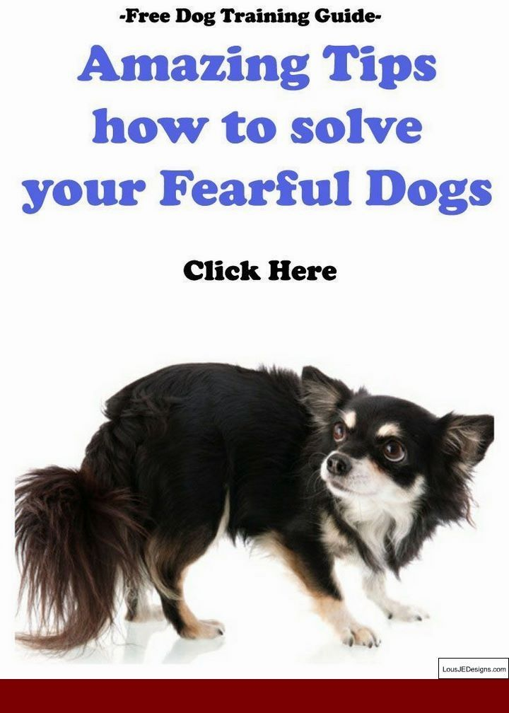Train A Guard Dog At Home And Pics Of How To Train A Dog To Run