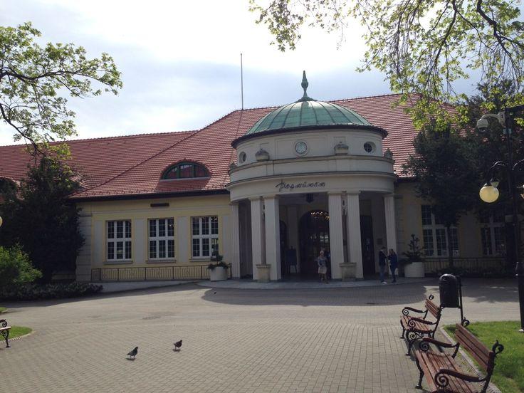 http://www.willawparku.pl/