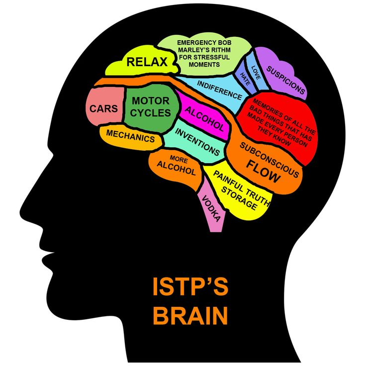MBTI in Real Life - ISTP