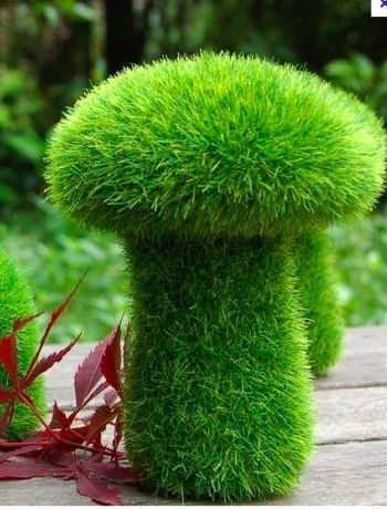Mossy Mushroom - use chicken wire for the shape line with spagnum moss and cover with chia seeds? Lol these look awesome