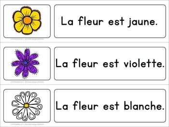 $ Les Fleurs du Printemps - Spring Flowers - resource in French - français