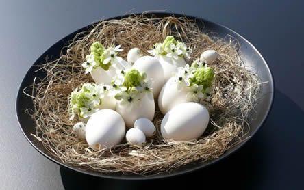 Paasboeket ganzeneieren Ornithogalum arabicum - bloemschikken Pasen