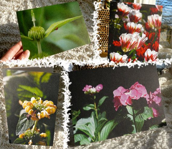 7 Recycled Blank Photo Cards of Vancouver Island by IVComfyCovers, $25.00