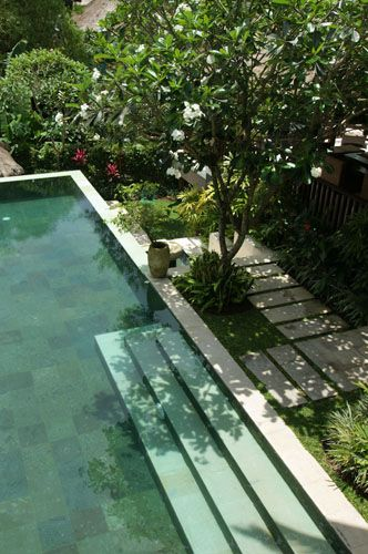 Love the broad steps into the pool and the garden right up to the edge of the pool. Pinned to Pool Design by Darin Bradbury.