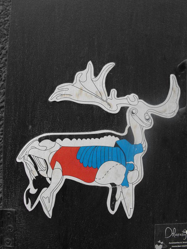 Deer - Galata