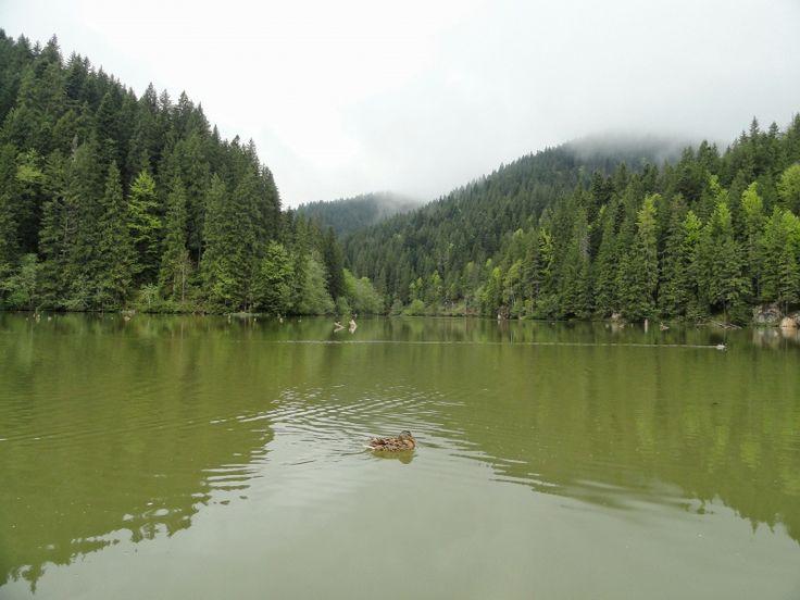 Red Lake - Romania