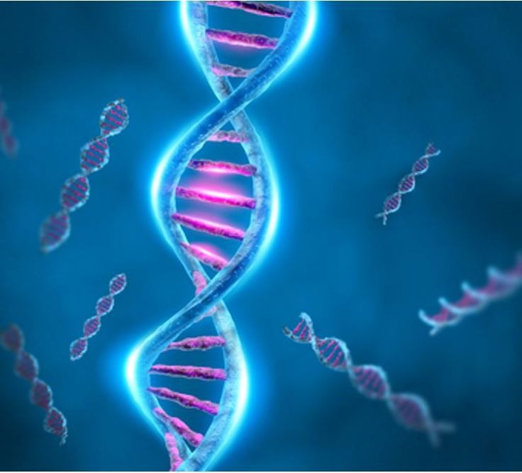 Alport Syndrome Genetics: Understanding Specific Gene Mutations.In part 3 of a 3-part series, Dr. Clifford Kashtan discusses advances in genetic testing and how this new technology may affect the understanding of #AlportSyndrome. #AlportAwareness #Genetics