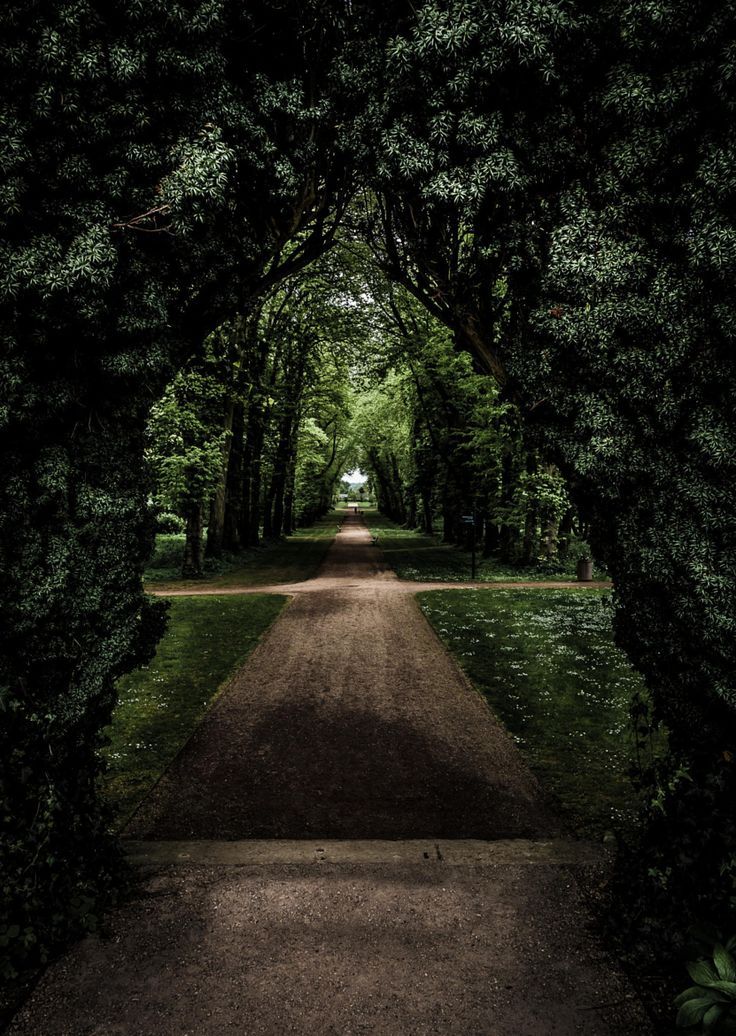 A Secret Garden, Antrim Castle Gardens, Northern Ireland  by Jason McCabe on 500px