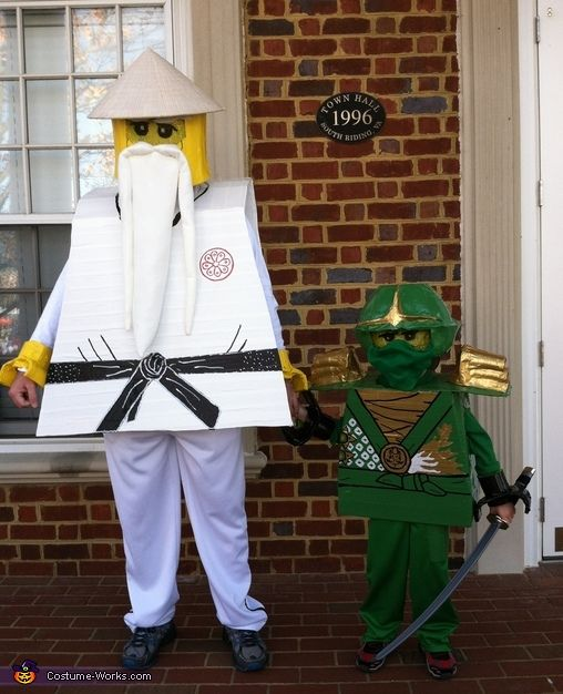 Ninjago lloyd the green ninja and sensei wu costume to - Sensei ninjago ...