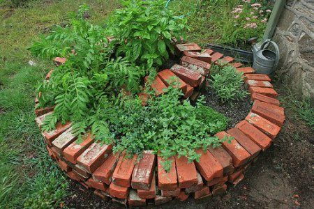 An Herb Spiral is usually 1 meter high and contains all the plants which are constantly used — the herbs: mints, thyme, marjoram, rosemary, sage, basil etc. It is a simple design. The center of the spiral is elevated and the ground falls as the spiral unfurls. This allows you to plant, dry soil plants like rosemary at the top and water loving plants at the bottom such as watercress, water chestnuts. You should be able to reach all the parts of the spiral without having to step into it…