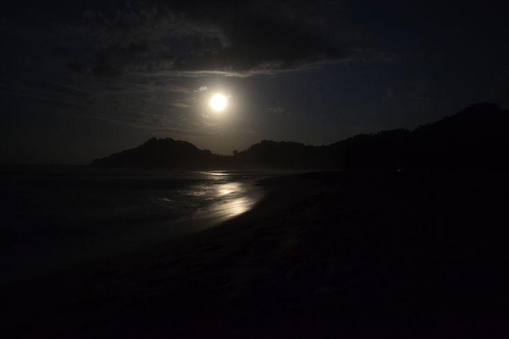 http://www.lacasadefelipe.com/wp-content/uploads/2014/09/Noche-en-el-Parque-Tayrona.jpg
