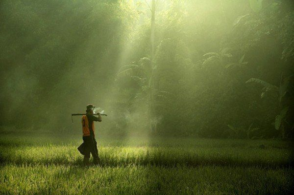 Fabulous Photography by Dewan Irawan