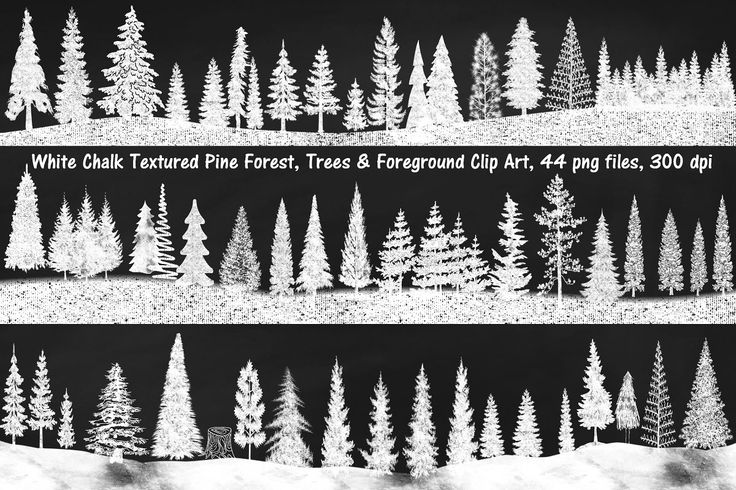 White Chalk Textured Pine Forest png