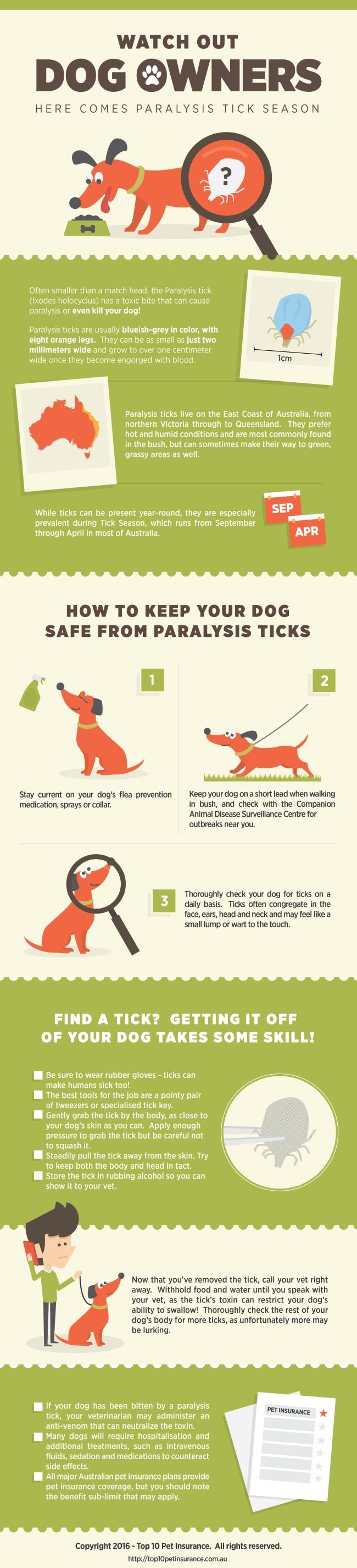 74 best infographics animals images on pinterest visual forget about snakes spiders and crocs the tiny paralysis tick may be the deadliest animal that most australian dogs ever cross paths with xflitez Choice Image