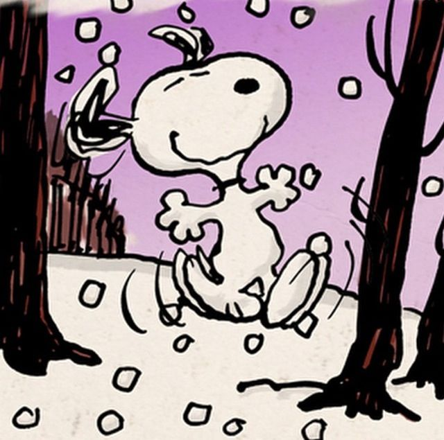 Snoopy dancing in the Snow