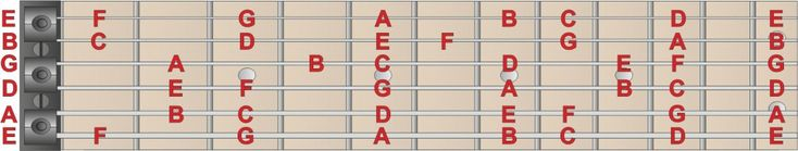 Notes on fretboard DIATONIC SCALE