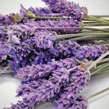 Laventelinkukka Yrttimetsä Kukkakimppu rauhoittaa aistejasi. Laventeli, pehmeä jasmiini ja vanilja luovat tuoreen sekoituksen.