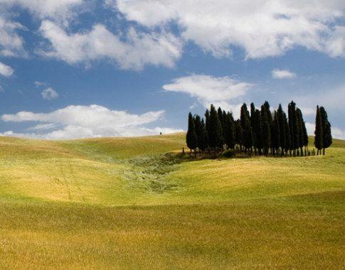 fotobehang toscaanse landschap - Google zoeken