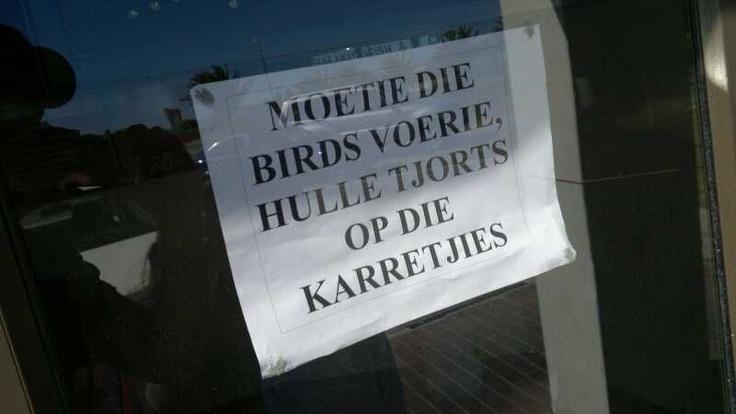 Moetie die birds voerie... Hahaha!