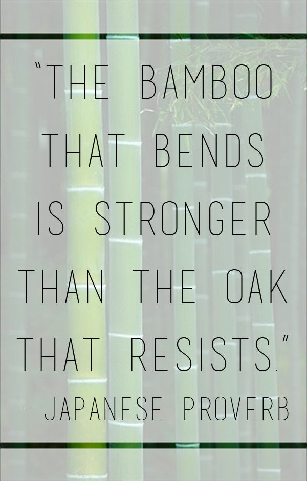 """The bamboo that bends is stronger than the oak that resists."" - Japanese Proverb"
