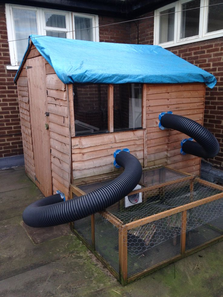 Runaround tubes added to the bunny shed! Ready for the new arrivals!