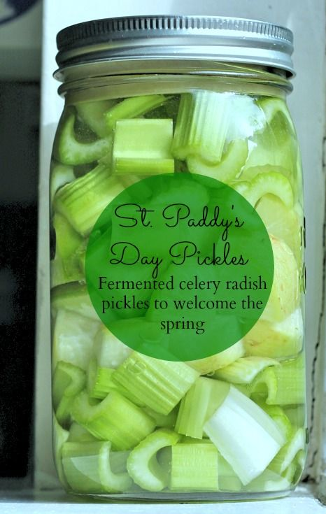 Welcome spring with green and tangy celery-radish pickles! Find the fermented recipe on Phickle.com