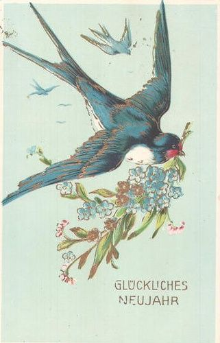 321px × 500px (scaled to 500px × 779px) (via bluebird of happiness   BIRDS   Pinterest) Found on weheartit.com Karen Haskett