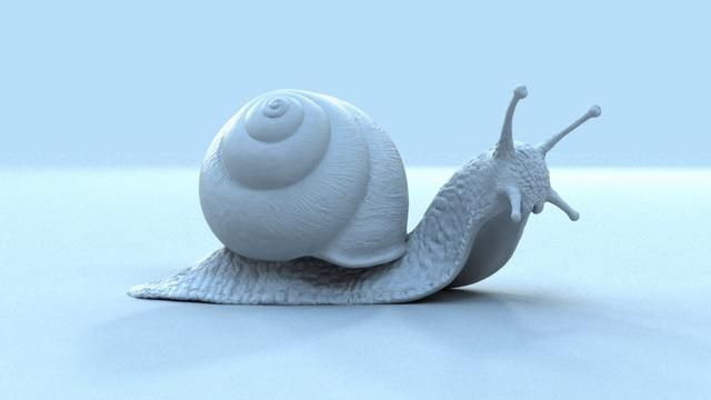 SEQUOIA - TESTIMONY OF A SNAIL - MAKING OF on Vimeo