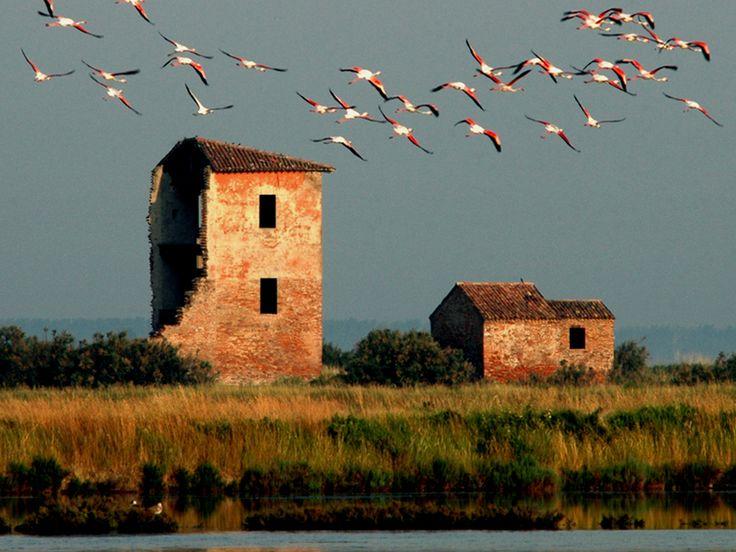 The Italian Landscapes Paesaggi italiani — Valli di Comacchio (Comacchio Marshes),...