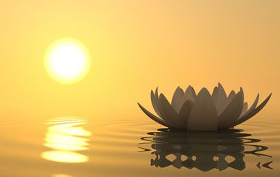 One image of spirituality: a  Zen flower lotus in water with sunset