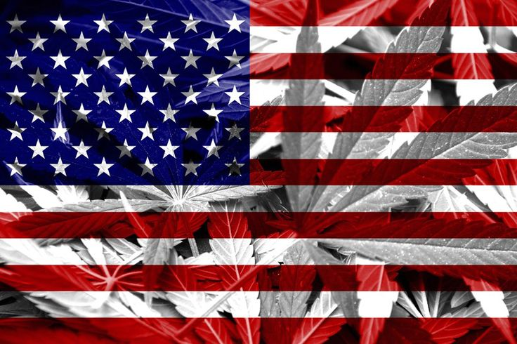 Swing State Voters Support Cannabis Legalization More Than Any 2016 Presidential Candidates