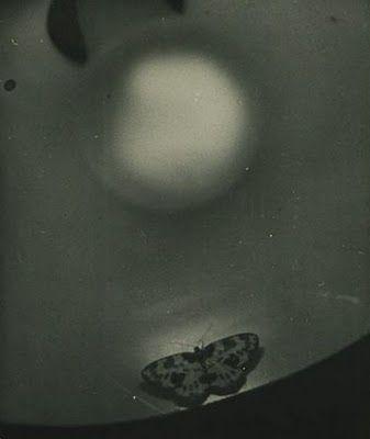 Osamu Shiihara