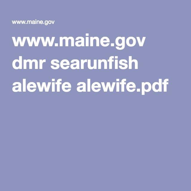 www.maine.gov dmr searunfish alewife alewife.pdf