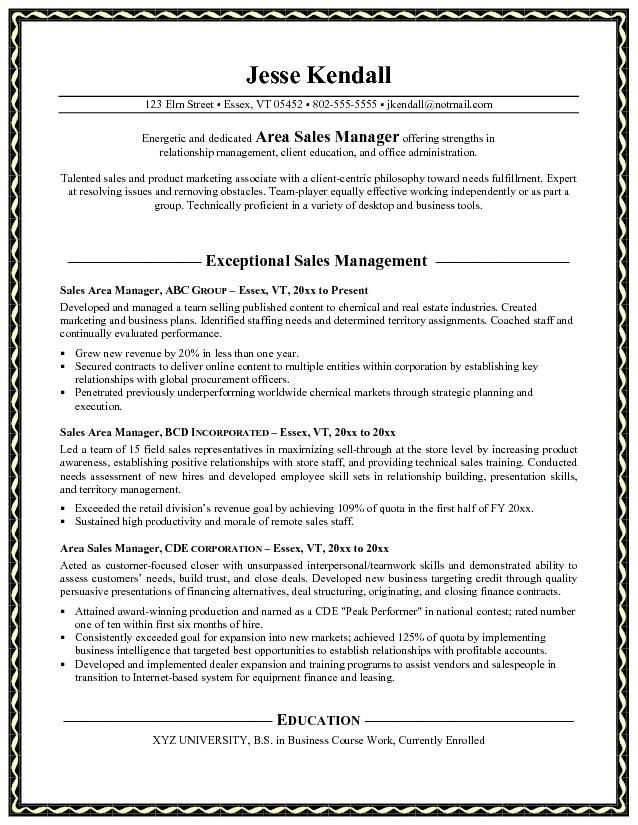 11 sample resume sales manager