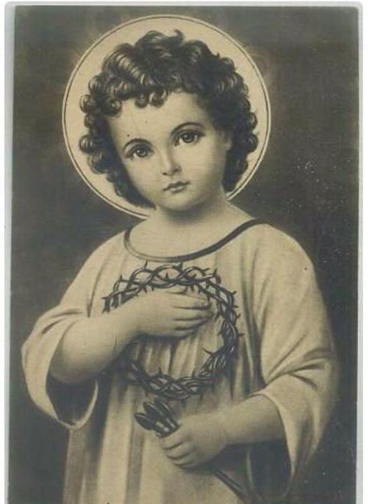 Fotos de la biografía - Comunidad del Divino Niño Jesus