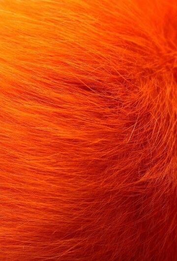 best 25 warm red hair ideas on pinterest auburn red